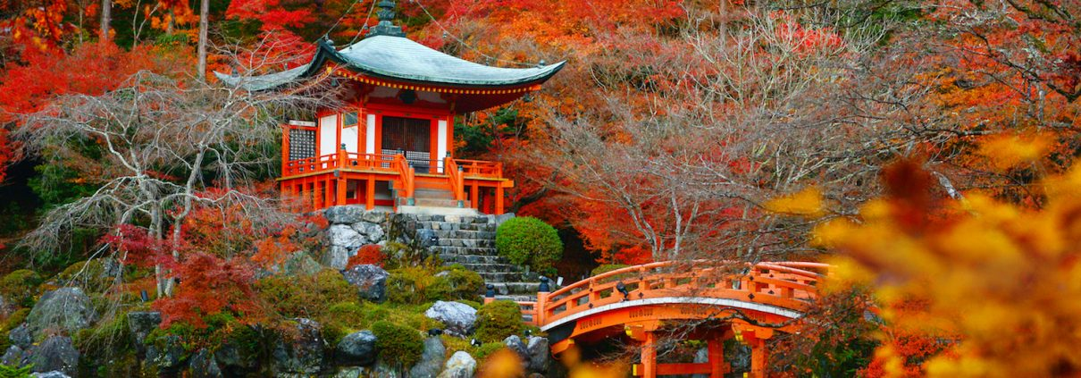 Fall foliage at Daigoji temple, Kyoto, Japan