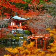 Fall foliage at Daigoji temple, Kyoto, Japan